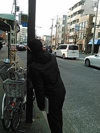 1月8日ホージーさん.jpg