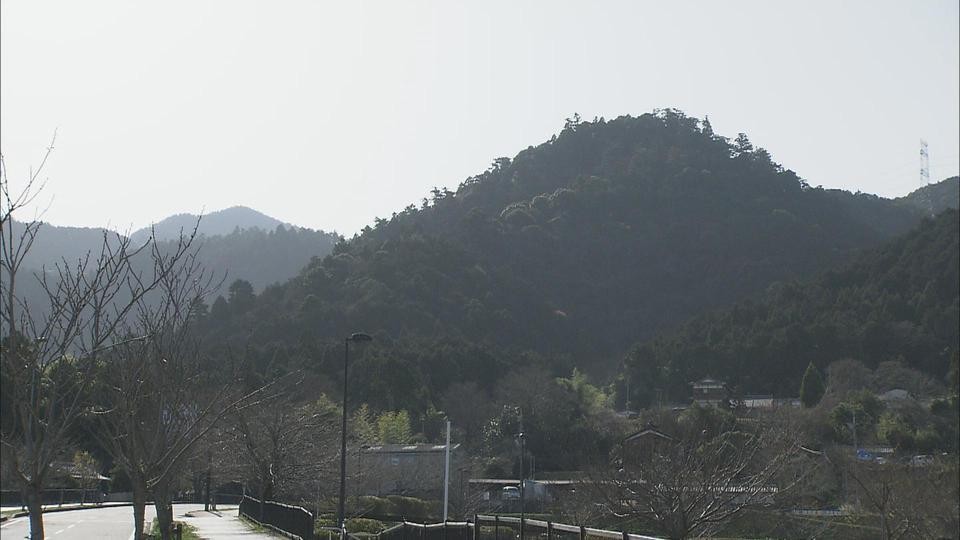 春 比叡山から