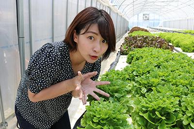 202007_yumeoibito_s001.jpg