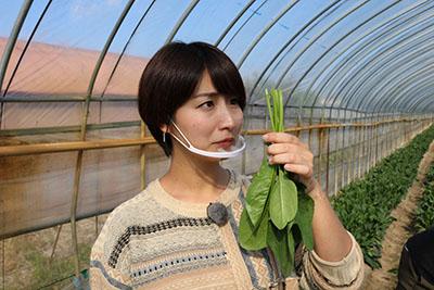 2202012_yumeoibito_s006.jpg