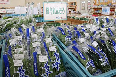202012_yumeoibito_s007_002.jpg